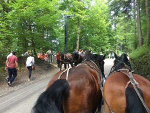 Pferdekutschen und Touristen zu Fuß auf dem Weg hinauf zu Schloß Neuswchwanstein