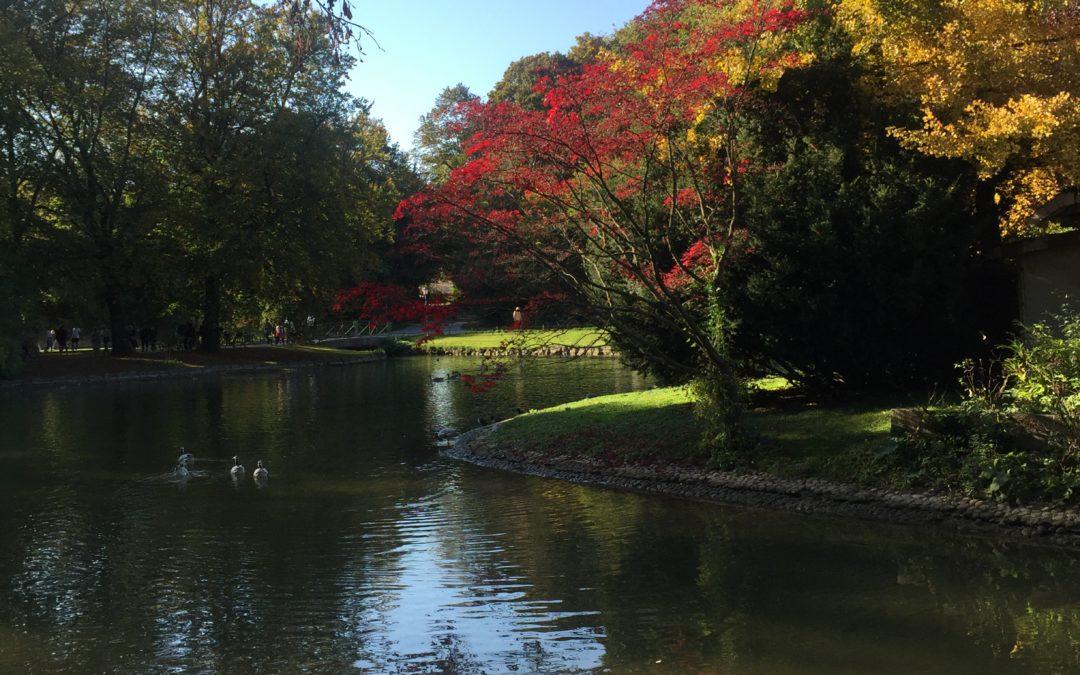 Englischer Garten – Jardin Anglais