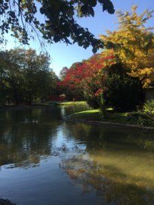 Englischer Landschaftspark